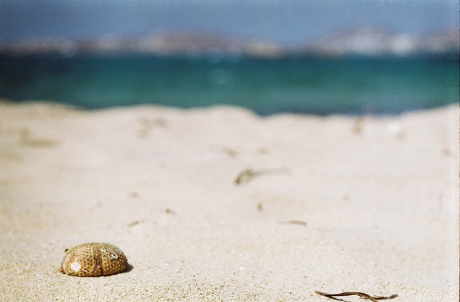 Delfini, Beaches, wondergreece.gr