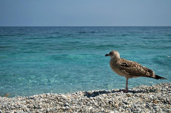 Λαλάρια, Παραλίες, wondergreece.gr