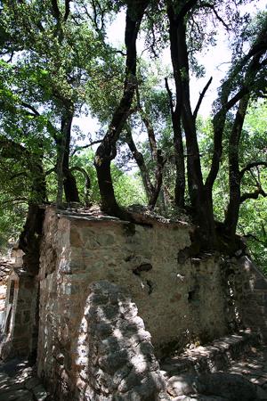 Αγία Θεοδώρα , Εκκλησίες & Μοναστήρια, wondergreece.gr