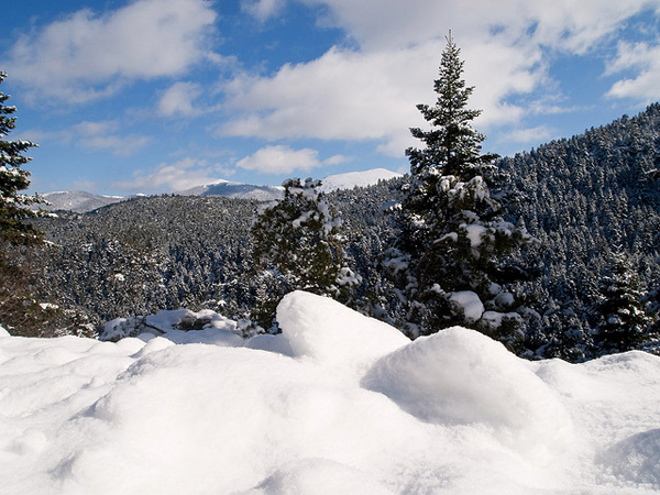 Αποτέλεσμα εικόνας για χιονισμενη βυτινα