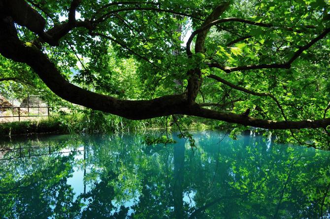 Λάδωνας, Ποτάμια, wondergreece.gr