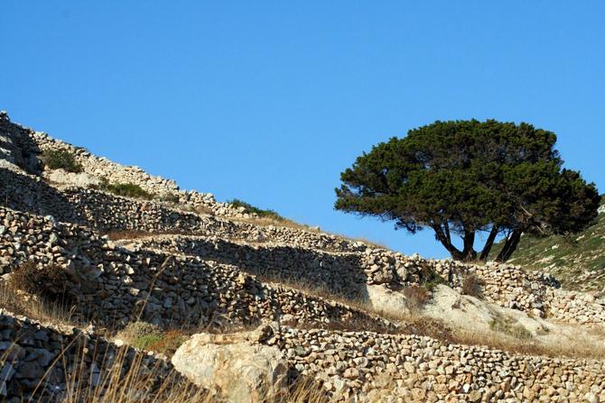Σταυρός - Δονούσα, Πόλεις & Χωριά, wondergreece.gr
