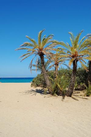 Βάι, Παραλίες, wondergreece.gr