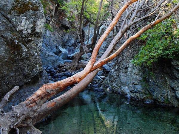 Βάθρες, Λίμνες, wondergreece.gr