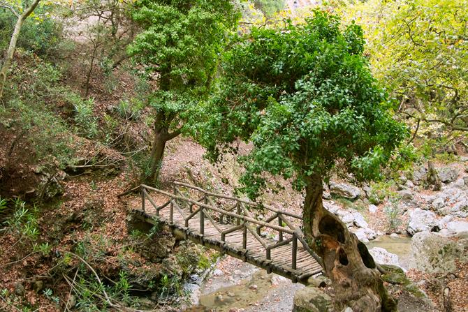 Patsos Gorge in Amari, Gorges, wondergreece.gr