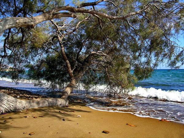 Αλυκή, Παραλίες, wondergreece.gr