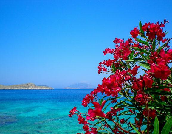 Όρμος Αγίας Θέκλας, Παραλίες, wondergreece.gr