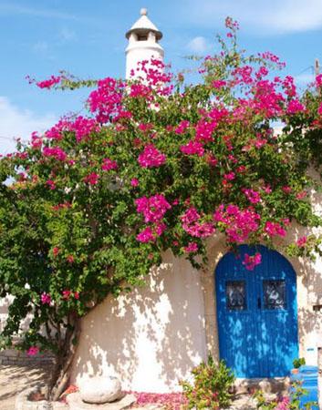 Mitata, Main cities & villages, wondergreece.gr