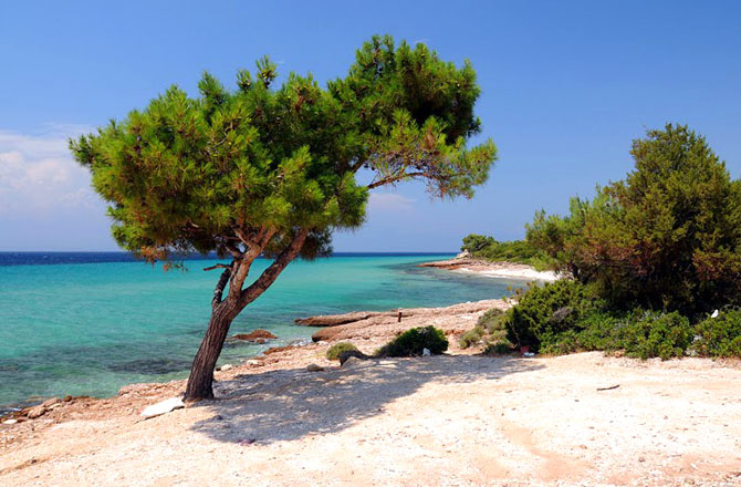 Limenaria , Beaches, wondergreece.gr