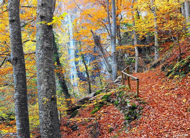 Livaditis Waterfall, Waterfalls, wondergreece.gr