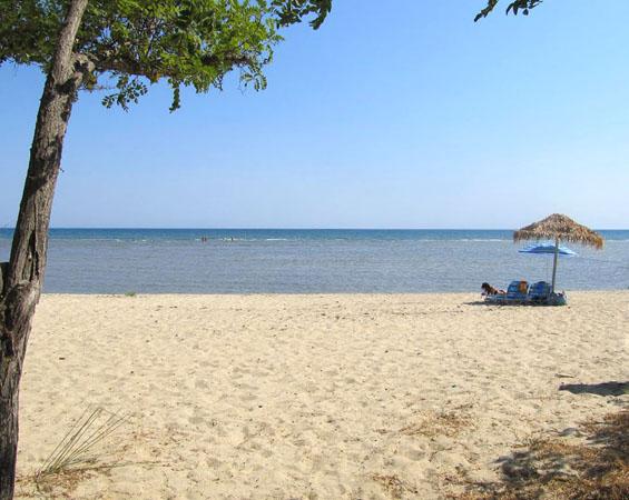 Mandra Beach, Beaches, wondergreece.gr