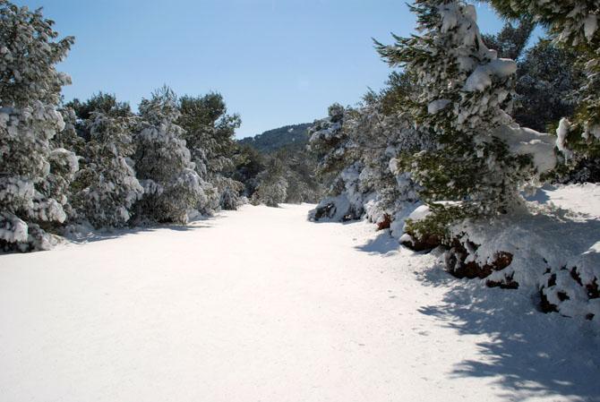 Ymittos, Mountains, wondergreece.gr