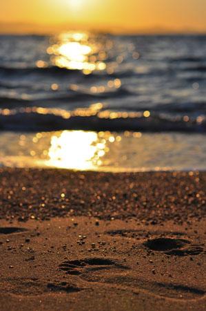 Mikri Vigla, Beaches, wondergreece.gr