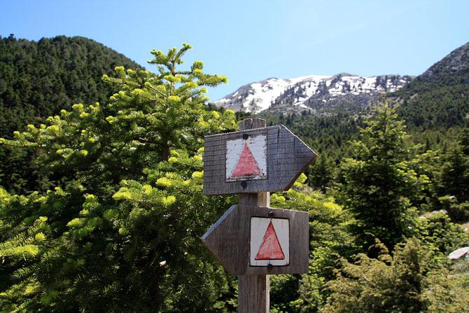 Ταΰγετος, Βουνά, wondergreece.gr