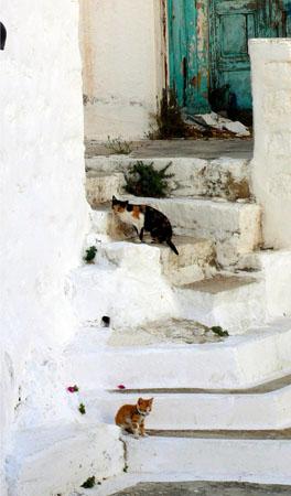 Skala, Main cities & villages, wondergreece.gr