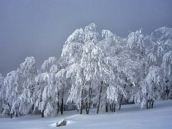 Verno (Vitsi), Mountains, wondergreece.gr