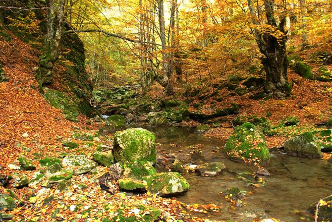 Paiko, Mountains, wondergreece.gr