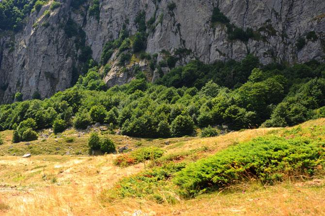 Pinovo, Mountains, wondergreece.gr