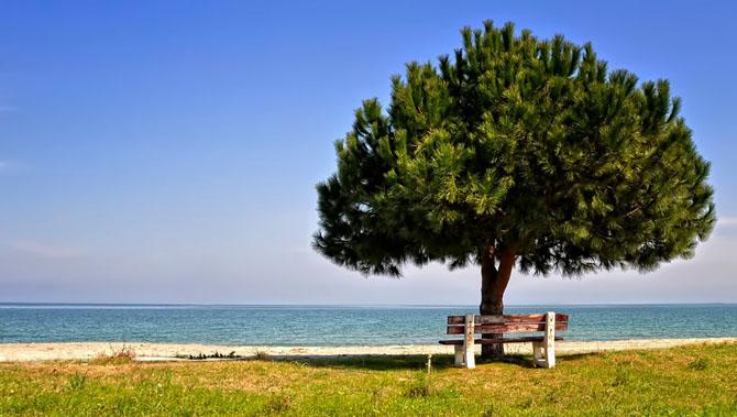 Σκοτίνα, Παραλίες, wondergreece.gr