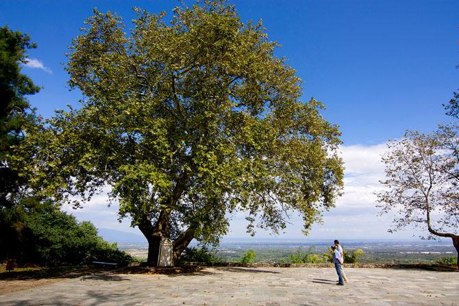 Park of Naousa, Monuments & sights, wondergreece.gr