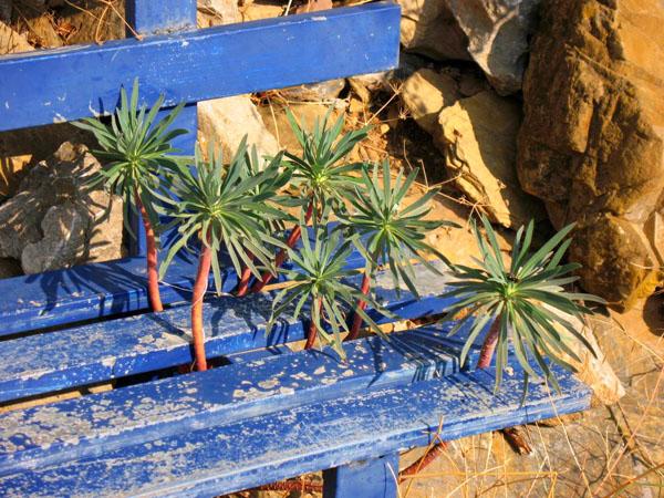 Σκουτάρι, Παραλίες, wondergreece.gr