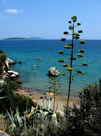 Τολό, Παραλίες, wondergreece.gr