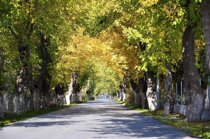 Skala Eressou , Main cities & villages, wondergreece.gr