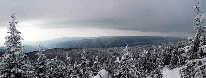 Elatia Forest (Kara Dere), Forests, wondergreece.gr