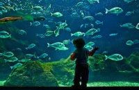 Aquarium of Crete (Cretaquarium), Heraklion Prefecture, wondergreece.gr