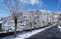 Magouliana, Arcadia Prefecture, wondergreece.gr