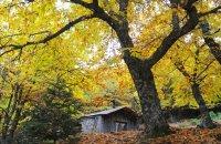 Parnonas, Lakonia Prefecture, wondergreece.gr