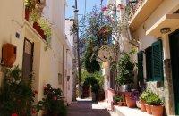 Neapoli, Lasithi Prefecture, wondergreece.gr