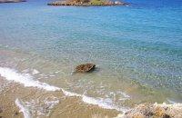 Kalathas, Chania Prefecture, wondergreece.gr