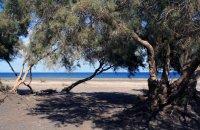 Αβίς, Σαντορίνη (Θήρα), wondergreece.gr