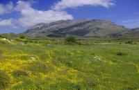 Kedros, Rethymno Prefecture , wondergreece.gr