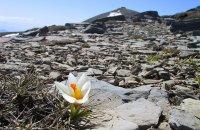 Mount Idi or Psiloritis , Rethymno Prefecture , wondergreece.gr