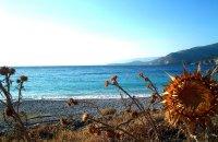 Τραχήλι, Χίος, wondergreece.gr