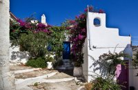 Old Village, Alonissos, wondergreece.gr