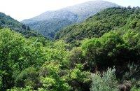 Χαραδιάτικα, Λευκάδα, wondergreece.gr
