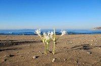 Legraina, Attiki Prefecture, wondergreece.gr