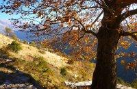Καλαρρύτες, Ν. Ιωαννίνων, wondergreece.gr