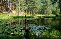 Λίμνη με τα Νούφαρα, Ν. Ιωαννίνων, wondergreece.gr
