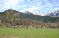 Horseback riding, Evritania Prefecture, wondergreece.gr