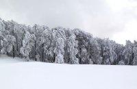 Verno (Vitsi), Florina Prefecture, wondergreece.gr