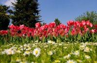 Park of Naousa, Imathia Prefecture, wondergreece.gr