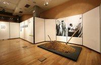 Μουσείο Ελιάς, Ν. Λακωνίας, wondergreece.gr