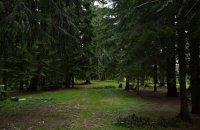 Elatia Forest (Kara Dere), Drama Prefecture, wondergreece.gr