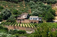 Anoskeli Winery & Oil Mill, Chania Prefecture, wondergreece.gr
