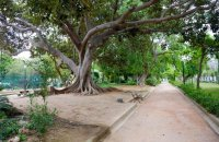 Public garden of Chania, Chania Prefecture, wondergreece.gr