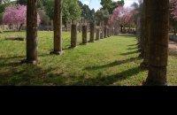 Ancient Olympia, Ilia Prefecture, wondergreece.gr
